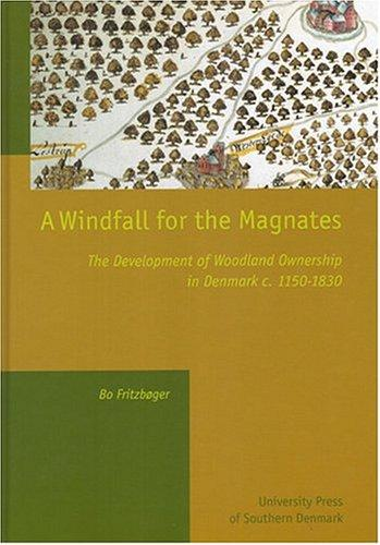 A Windfall For The Magnates by Bo Fritzboger