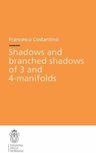 Shadows and branched shadows of 3- and 4-manifolds (Publications of the Scuola Normale Superiore / Theses (Scuola Normale Superiore)) by Francesco Costantino