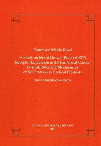 A study on nerve growth factor (NGF) receptor expression in the rat visual cortex by Francesco M. Rossi
