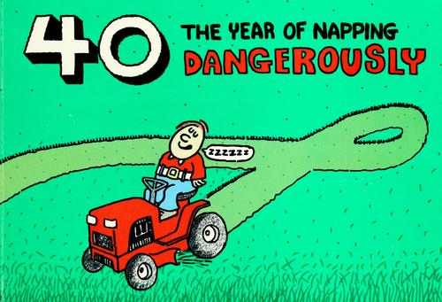 40, the year of napping dangerously by illustrated by Bill Bridgeman.